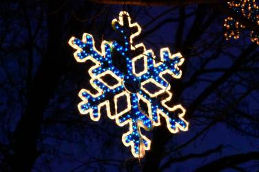 SLIDER-hlmn18-snowflake-closeup-A